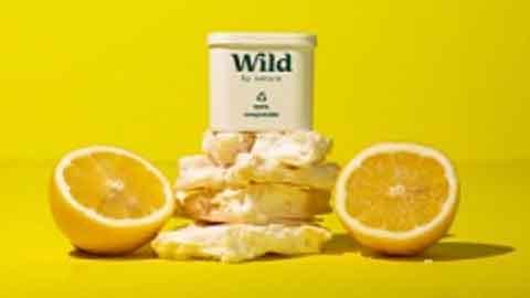 Lemon Meringue Wild refill